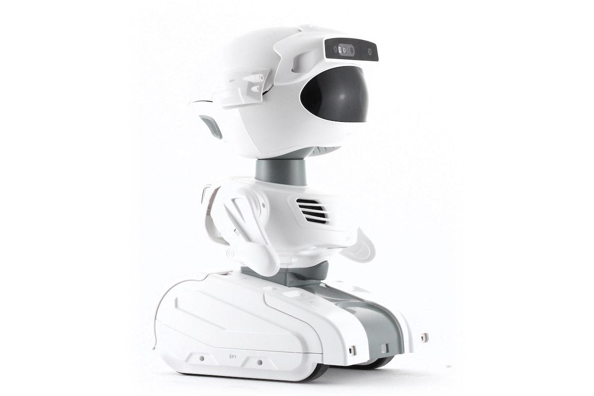 Misty Robot